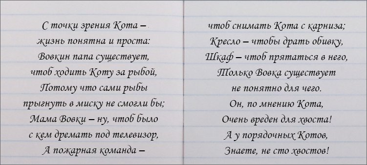 стихотворение-на-страницах-книги