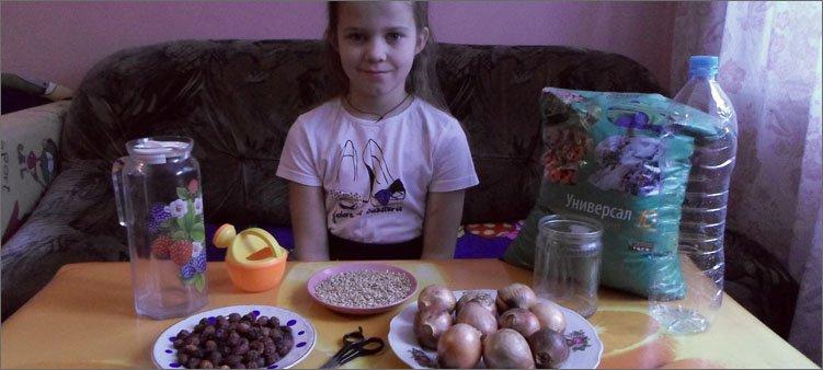 девочка-сидит-за-столом-на-котором-стоит-лук-земля-зерно-шиповник
