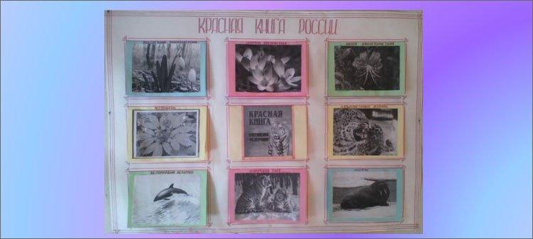 плакат-красная-книга-россии
