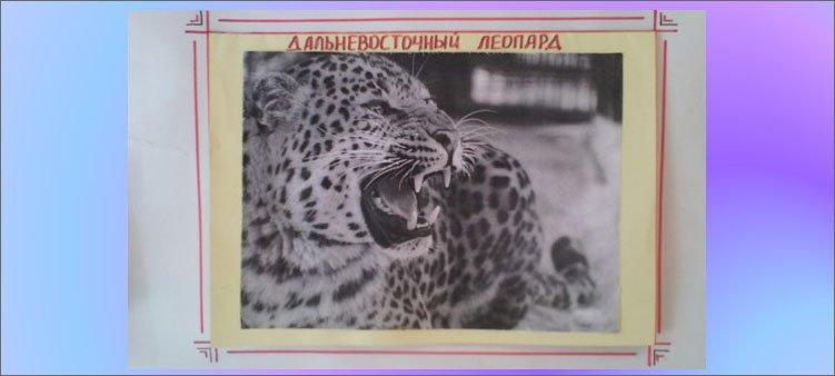 блок-леопард-на-плакате