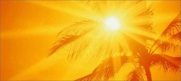 солнце-и-пальмы