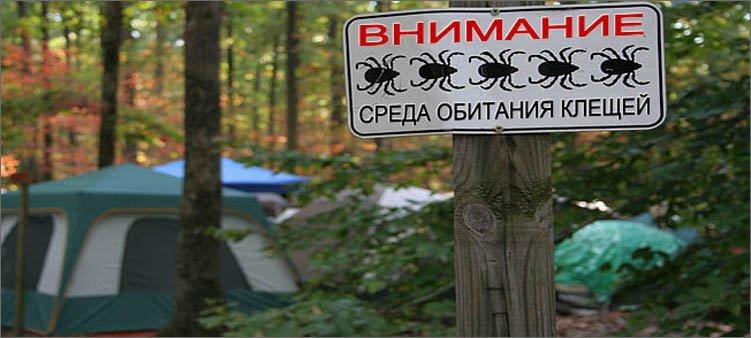табличка-про-клещей-в-лесу