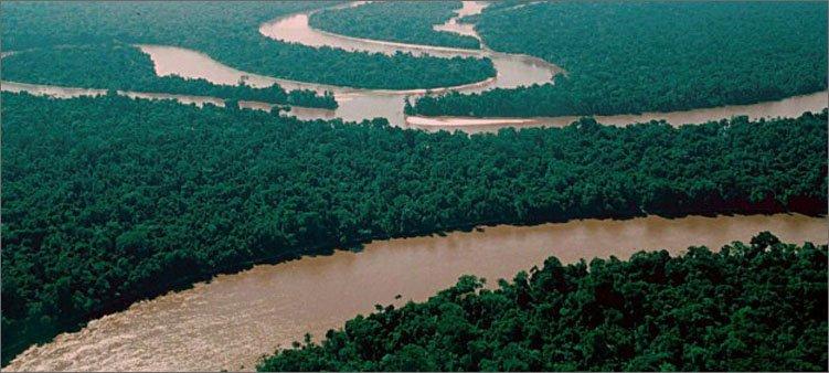 река-амазонка-с-высоты-птичьего-полета