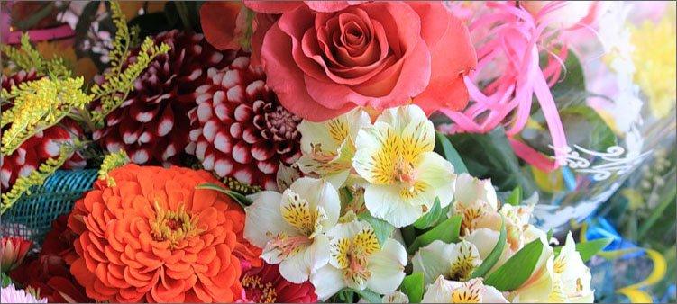 разные-яркие-цветы