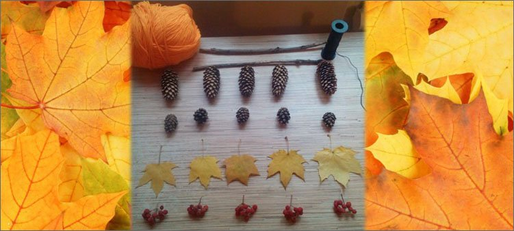 шишки-нитки-палочки-листья-рябина