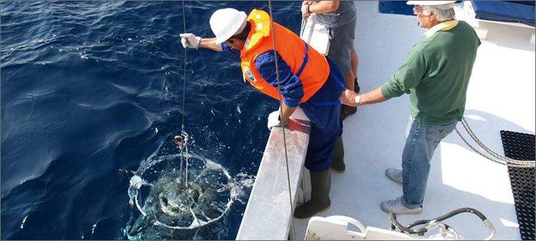 океанолог-проводит-забор-воды