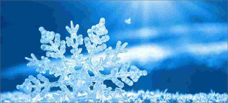 снежинка-лежит-на-снегу
