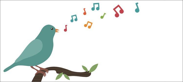 птица-и-нотки