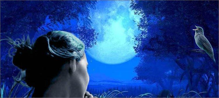 девушка-слушает-соловья-ночью