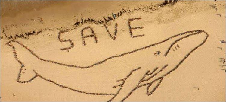 надпись-и-рисунок-на-песке-из-камней