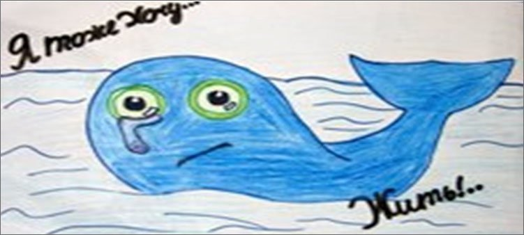 детский-рисунок-в-защиту-китов
