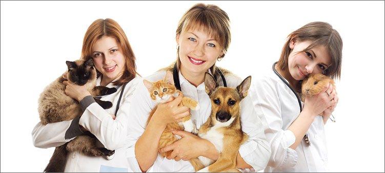 ветеринары-с-пациентами