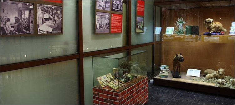дом-музей-джеймса-херриота