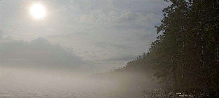 туман-в-мае