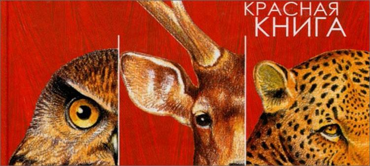 красная-книга-животные