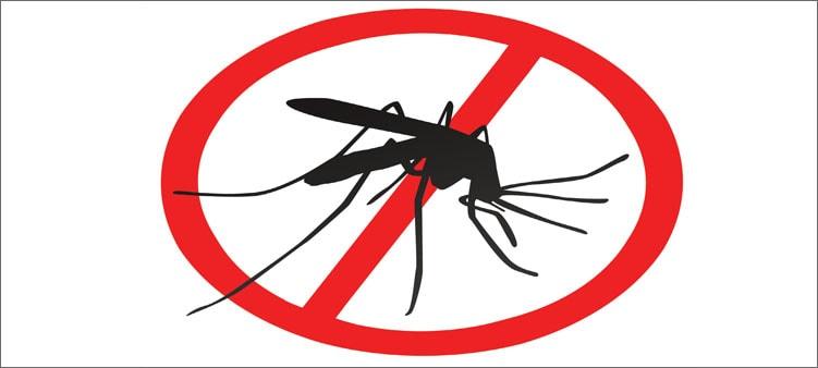 знак-стоп-комар