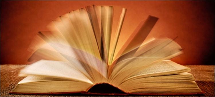 страницы-книги