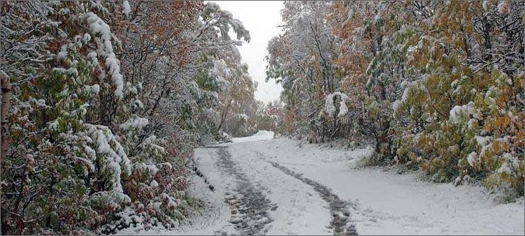 снег-выпал