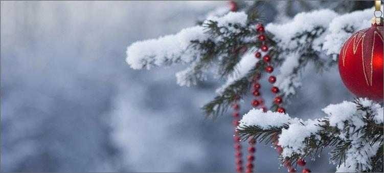 новогодняя-елочка-в-снегу