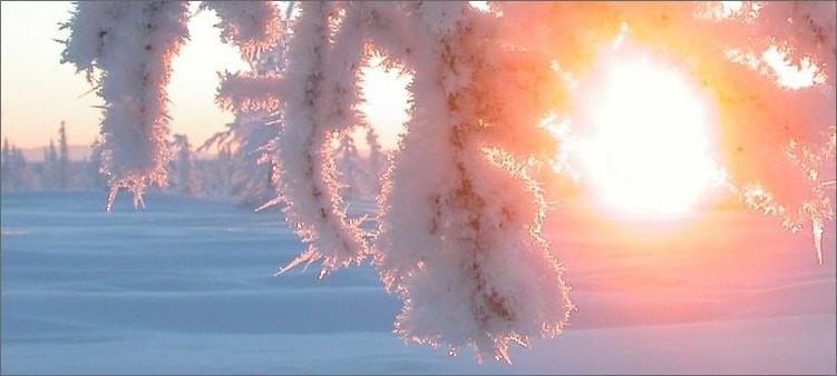 зимнее-солнышко
