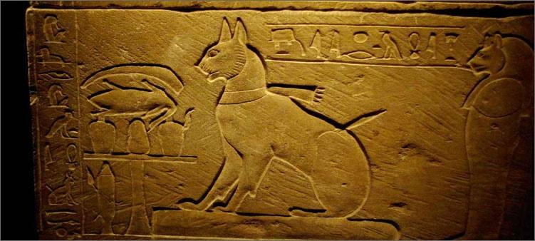 кошки-в-египте