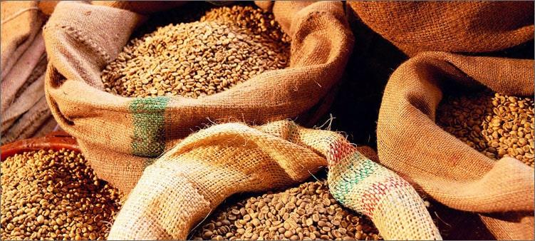 зерно-в-мешках