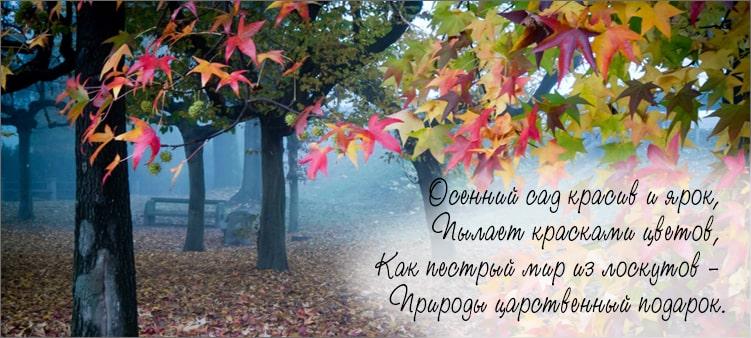 осенний-сад