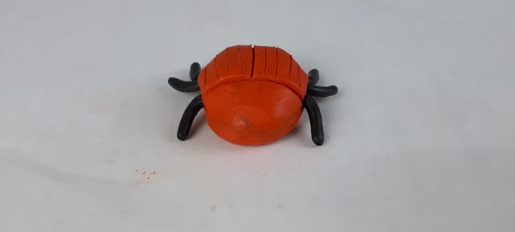 жук-вид-спереди