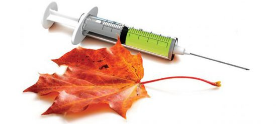 Картинки по запросу прививка против гриппа гифка