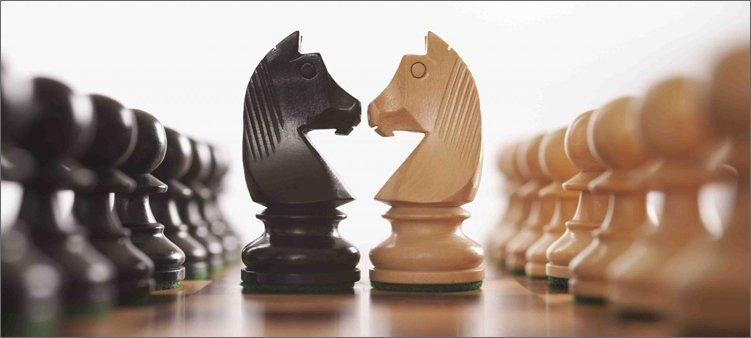 шахматные-кони