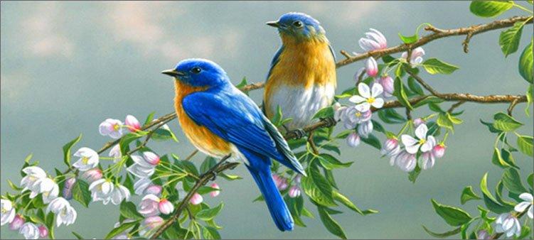 птички-сидят-на-ветке