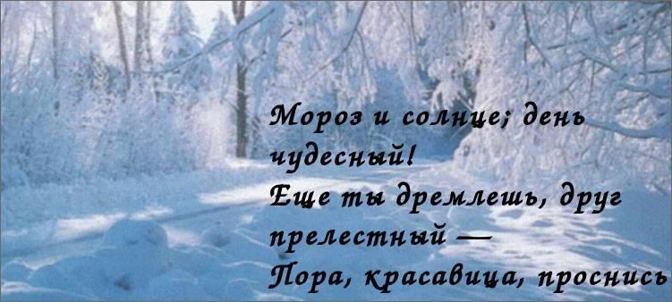 зимнее-утро-в-лесу