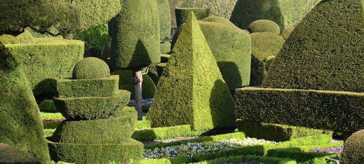 красивые-деревья-в-саду