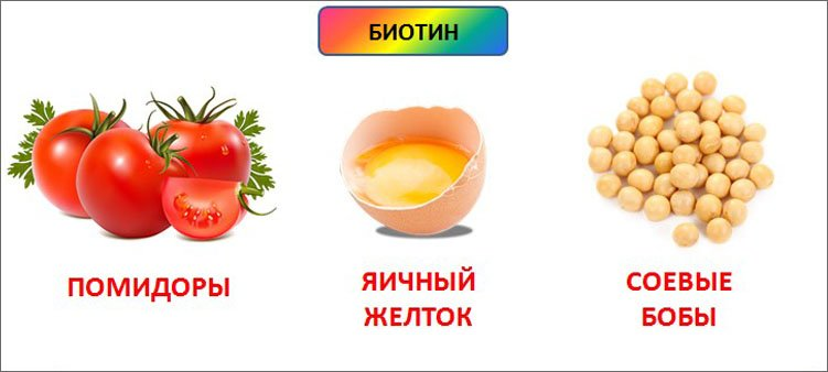 источники-биотина