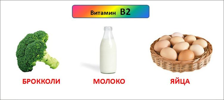 источники-витамина-в-2