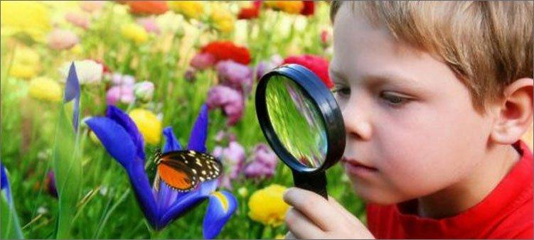 мальчик-через-лупу-наблюдает-за-бабочкой