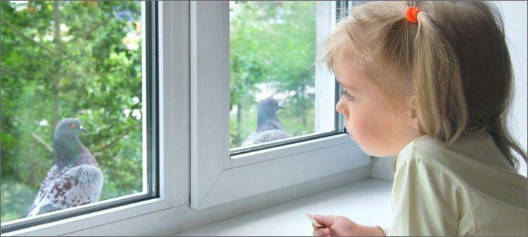 девочка-смотрит-на-голубя-в-окно