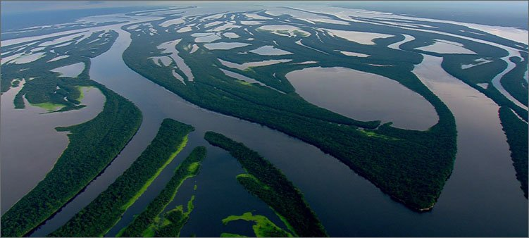 река-амазонка-водоносная
