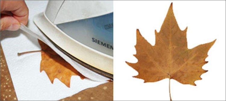 сушим-листья-утюгом