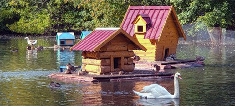 пруд-для-птиц-в-липецком-зоопарке
