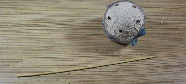шпажка-и-еловый-шар