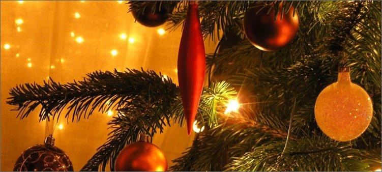 рождественская-ель