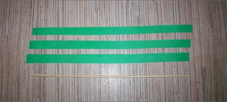 шпажка-и-зеленые-полоски