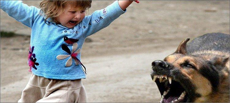 ребенок-и-собака