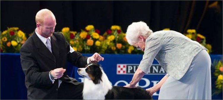эксперт-на-выставке-собак