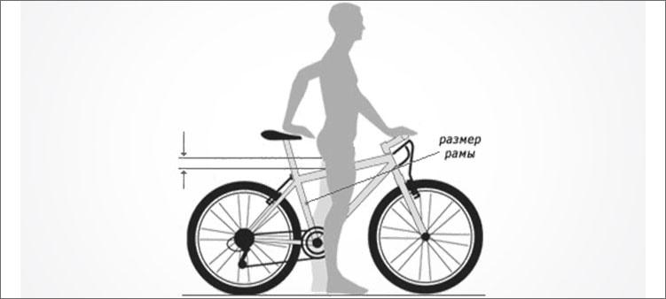 подбор-велосипеда-по-росту