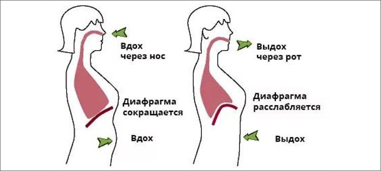схема-речевого-дыхания