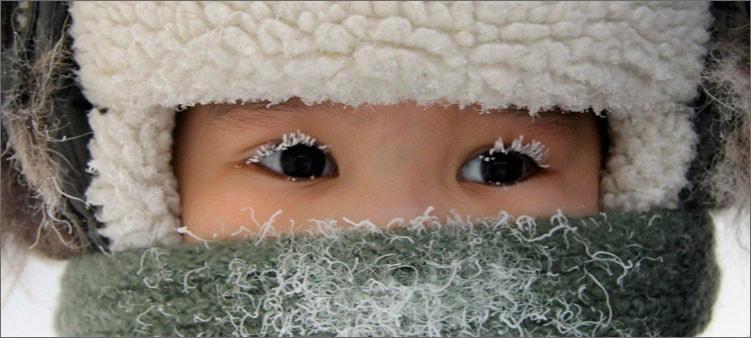 белые-реснички-зимой